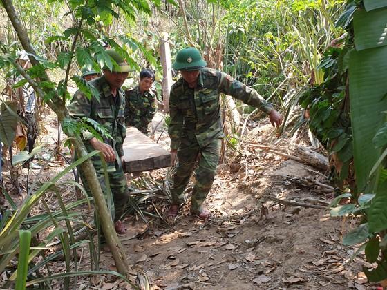 Phát hiện 3 hầm gỗ mun ở bản Cu Tồn ảnh 1