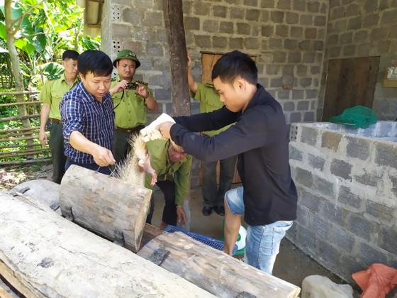Quảng Bình: Tạm giữ nhiều động vật rừng nuôi trái phép ảnh 2
