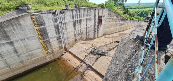 Chịu khát bên hồ chứa hơn 11 triệu khối nước ảnh 2