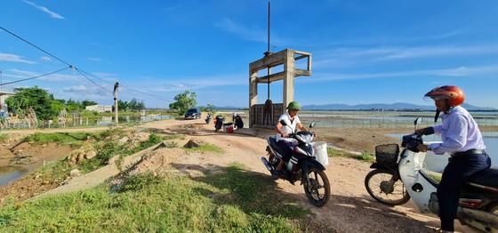Hoàn thành dự án nâng cấp hạ tầng nuôi trồng thủy sản Nam, Bắc sông Gianh ảnh 2