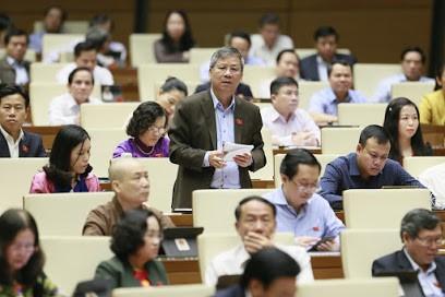 """Lo doanh nghiệp Việt """"chết trên sân nhà"""" vì hàng nước ngoài """"đội lốt"""" ảnh 2"""