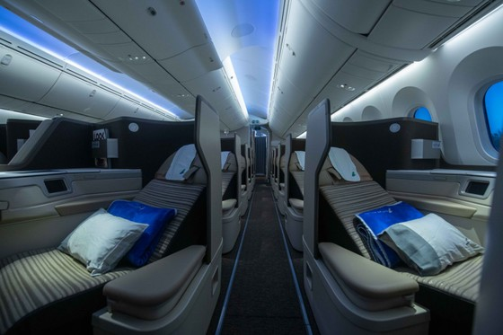 Máy bay Boeing 787-9 Dreamliner đầu tiên về với đội bay của Bamboo Airways ảnh 4