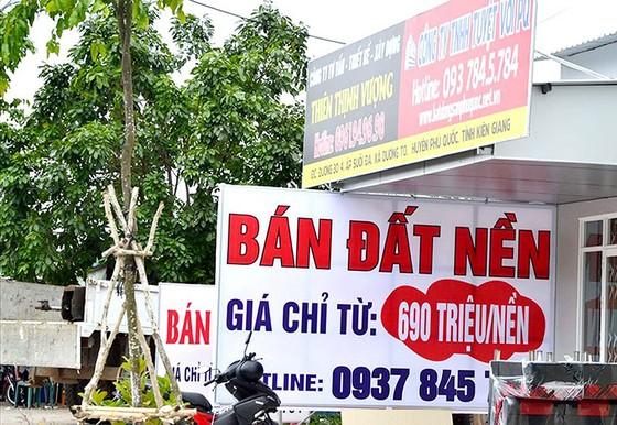 Kiên Giang kiên quyết xử lý sai phạm về đất đai tại Phú Quốc ảnh 1