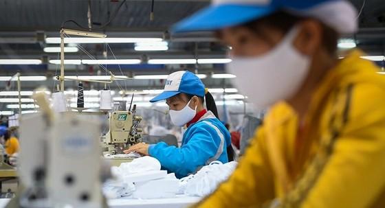 Thành lập Tổ cố vấn chuyên môn Mạng lưới doanh nghiệp liêm chính Việt Nam ảnh 1