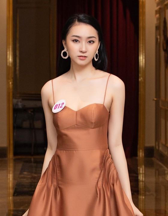 Chiêm ngưỡng nhan sắc Top 60 Hoa hậu Việt Nam 2020 ảnh 18