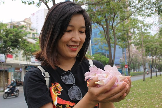 Hoa kèn hồng khoe sắc trên đại lộ ảnh 12