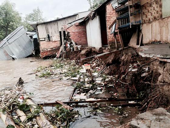 65 điểm sạt lở bờ sông, hàng trăm hộ dân tỉnh Vĩnh Long bị ảnh hưởng  ảnh 1
