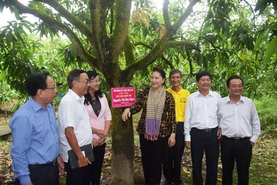Chủ tịch Quốc hội Nguyễn Thị Kim Ngân: Đồng Tháp là điểm sáng trong mô hình liên kết nông dân ảnh 2