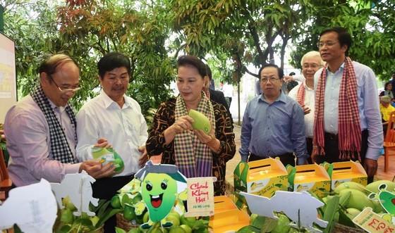 Chủ tịch Quốc hội Nguyễn Thị Kim Ngân: Đồng Tháp là điểm sáng trong mô hình liên kết nông dân ảnh 1