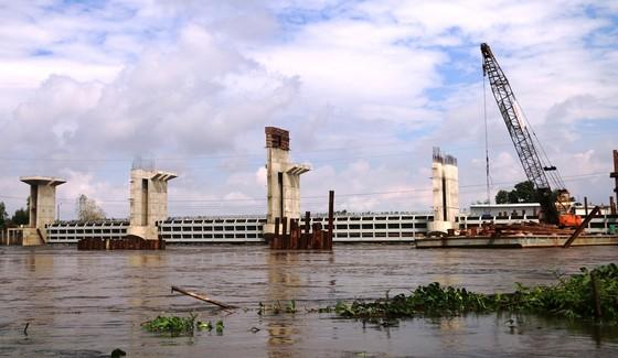 Xả lũ đập Trà Sư đưa nước vào vùng Tứ giác Long Xuyên ảnh 3