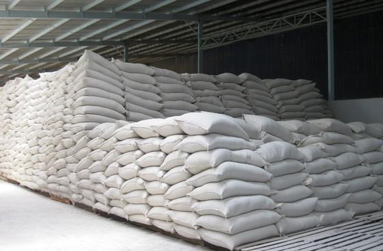 Giá lúa ở ĐBSCL giảm nhẹ do doanh nghiệp hạn chế thu mua ảnh 2