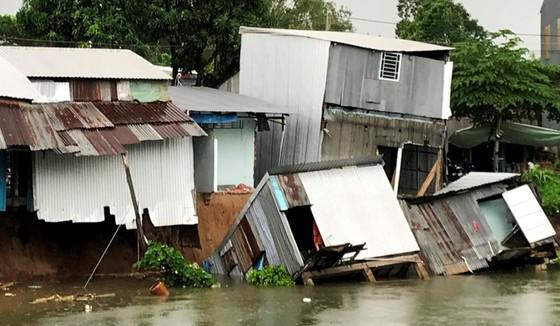 Sạt lở nghiêm trọng khiến 15 hộ dân tại An Giang phải di dời khẩn cấp ảnh 2