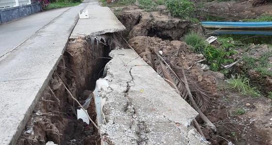 Hơn 58.000ha lúa ở ĐBSCL bị thiệt hại do hạn mặn ảnh 5