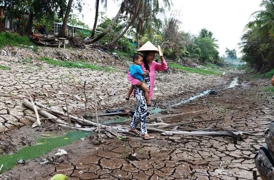 Hơn 58.000ha lúa ở ĐBSCL bị thiệt hại do hạn mặn ảnh 3
