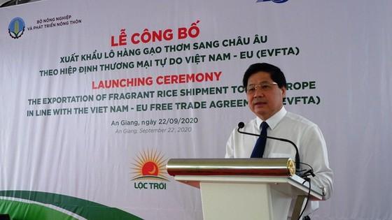 Xuất khẩu lô gạo thơm đầu tiên ở An Giang sang châu Âu theo Hiệp định EVFTA ảnh 2