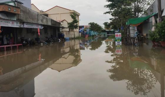 Hơn 2.500 căn nhà ở Vĩnh Long bị ngập do triều cường ảnh 1