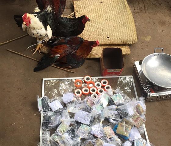 Bắt 37 đối tượng đá gà ăn tiền ở An Giang  ảnh 1
