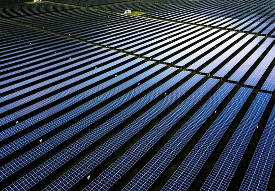 Hoàn thành nhà máy điện mặt trời 6.000 tỷ đồng ở An Giang ảnh 1