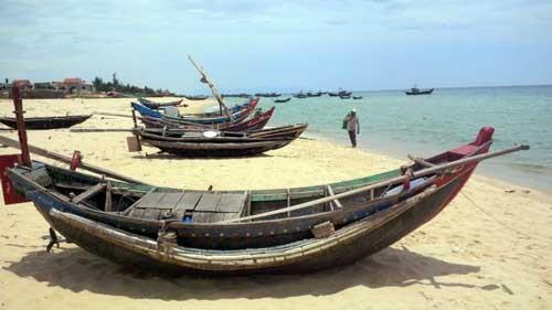 Quảng Bình ước tính thiệt hại 4.000 tỉ đồng sau vụ cá chết ảnh 1