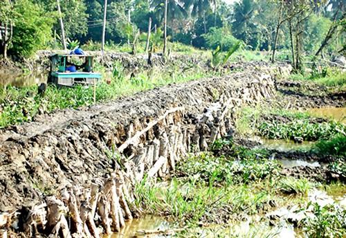 166 tỷ đồng gia cố 8 bờ bao khu vực huyện Hóc Môn ảnh 1