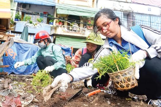 Biến bãi rác thành vườn hoa ảnh 5