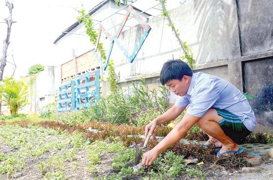 Biến bãi rác thành vườn hoa ảnh 4