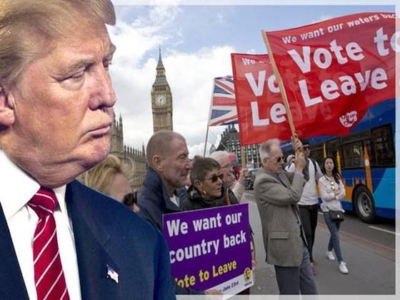 Sự trùng lặp giữa Brexit và bầu cử Mỹ ảnh 1