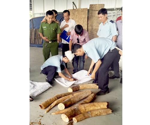 Chung tay phòng chống buôn bán động vật hoang dã ảnh 1