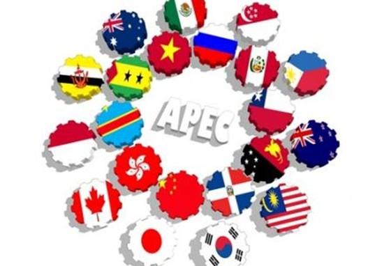 """""""Cơ hội vàng"""" từ Năm APEC 2017 ảnh 1"""