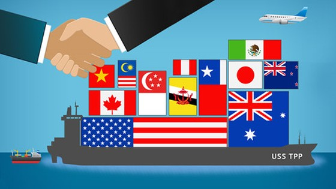APEC 24: Đề xuất thúc đẩy TPP không cần Mỹ ảnh 1