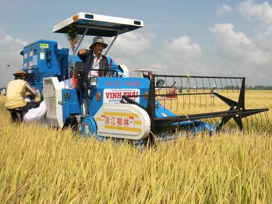 Đi Campuchia học… trồng lúa ảnh 1
