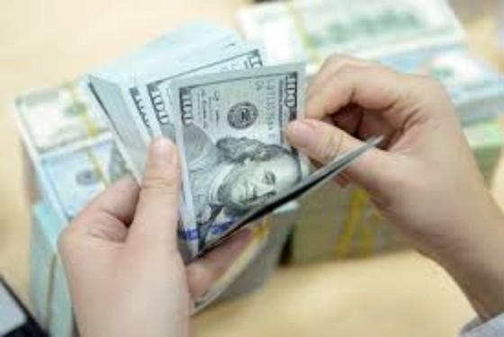 Vốn FDI đạt hơn 18 tỉ USD ảnh 1