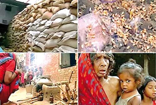 """Ấn Độ: """"Siêu"""" trộm thực phẩm (Kỳ 1) ảnh 1"""