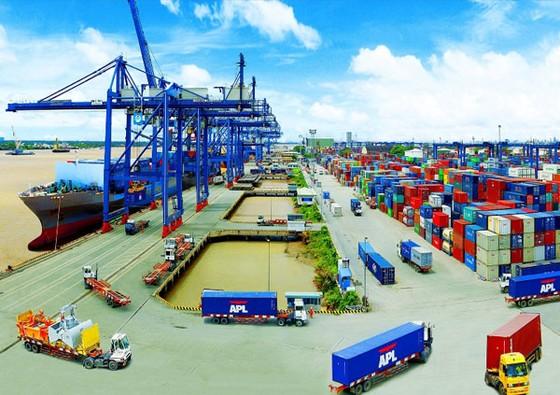 Nâng cấp cảng Cát Lái tiếp nhận tàu 40.000 tấn ảnh 1