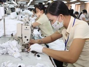 EU công bố Sách Xanh 2011 về kinh tế Việt Nam ảnh 1