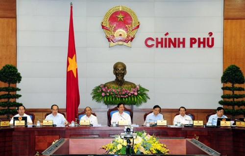 Chính phủ họp phiên thường kỳ tháng 5-2013 ảnh 1