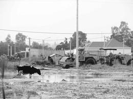 Nhiều dự án khu dân cư bỏ hoang ảnh 1