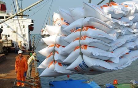 Kiến nghị hỗ trợ 100% lãi suất DN tạm trữ lúa gạo ảnh 1