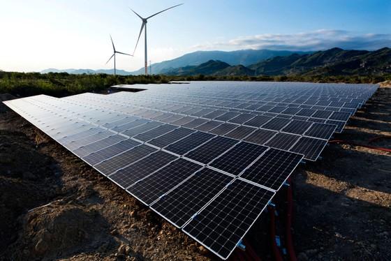 Khánh thành đưa vào vận hành Trạm biến áp 500kV và đường dây 220/500kV kết hợp Nhà máy điện mặt trời Trung Nam ảnh 6