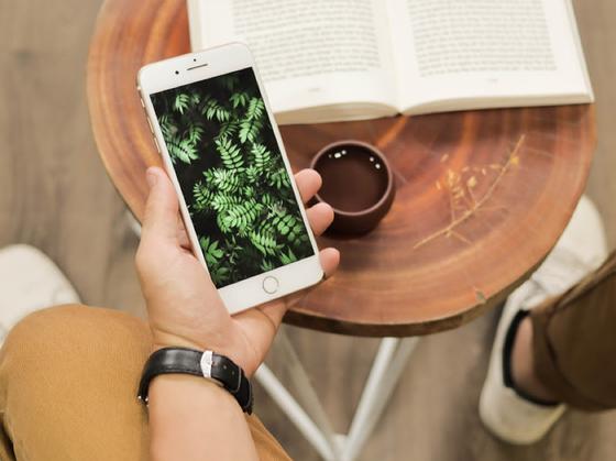 Với tầm 9 triệu, nên chọn iPhone 7 Plus hay Samsung Galaxy Note 8 chơi Tết? ảnh 1