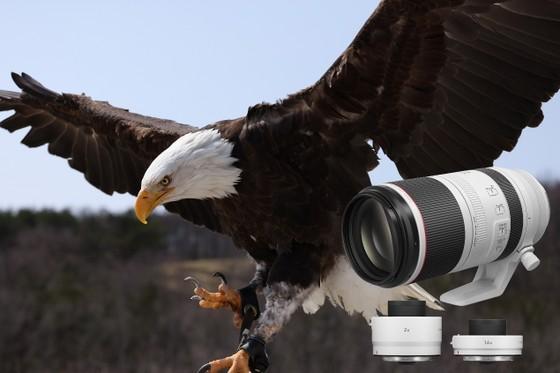 Canon ra mắt máy ảnh EOS R5, R6 và loạt ống kính mới  ảnh 7