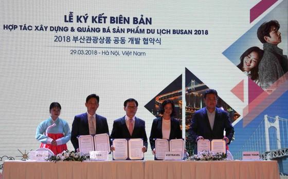 Việt Nam là điểm đến lý tưởng của du khách Hàn Quốc ảnh 1