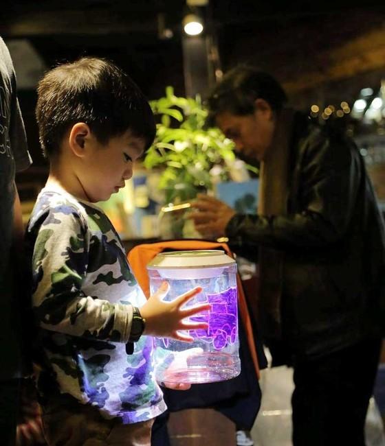 Vũ điệu Cầu vồng sẽ tỏa sáng trong lễ hội Singapore lần đầu tiên tại Việt Nam ảnh 1