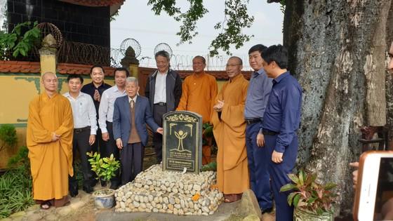 Cây thị 900 tuổi gắn liền với chiến tích Bạch Đằng Giang được công nhận là cây Di sản ảnh 1