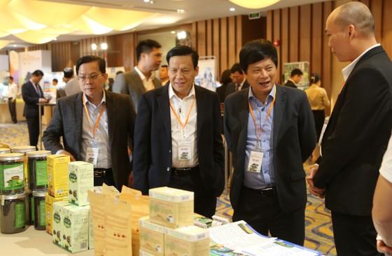 Cơ hội vàng để phục hồi và phát triển ngành công nghiệp không khói ảnh 4