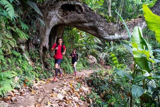 Khám phá cung đường huyền ảo của Ba Bể Jungle Marathon ảnh 4
