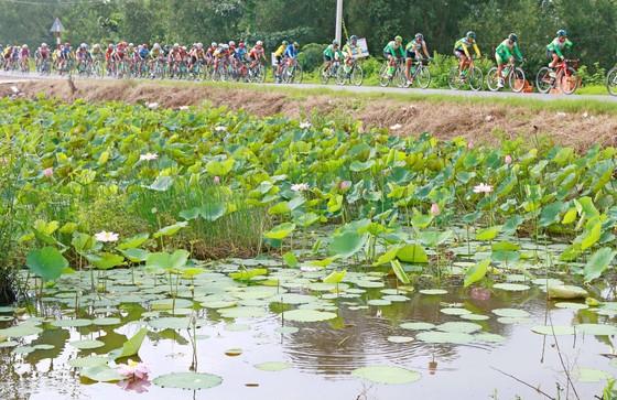 Giải xe đạp Đồng bằng sông Cửu Long tăng hơn 50% tiền thưởng ảnh 1