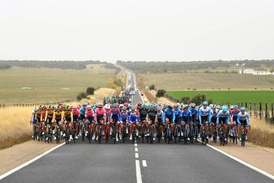 Chiến thắng diệu kỳ của Magnus Cort tại giải xe đạp Vuelta a Espana  ảnh 2