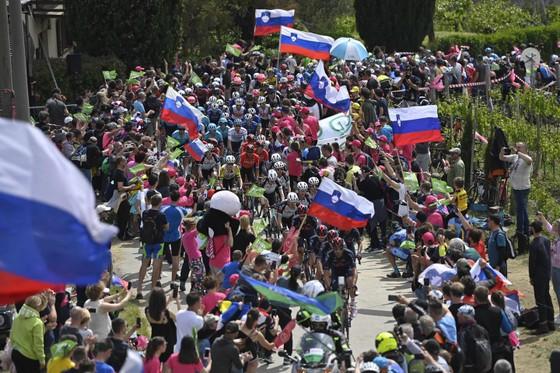 Tai nạn kinh hoàng khiến giải xe đạp Giro d'Italia đang đua phải tạm dừng cấp cứu VĐV ảnh 3