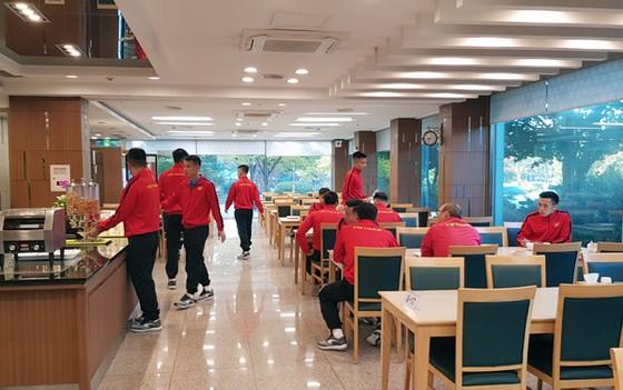 Đội tuyển Việt Nam nhận sự quan tâm đặc biệt của truyền thông Hàn Quốc ảnh 1